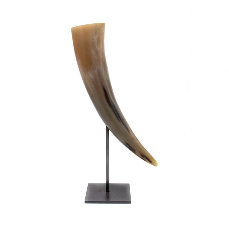 Narrow horn beige